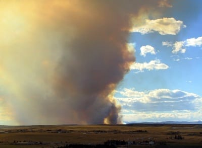 wildfire insurance