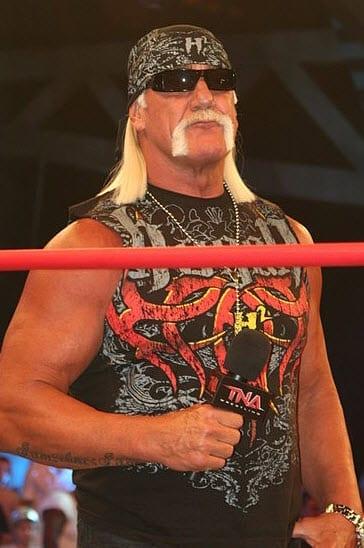 Hulk Hogan 2010
