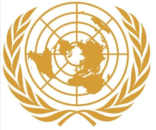 International Insurance News