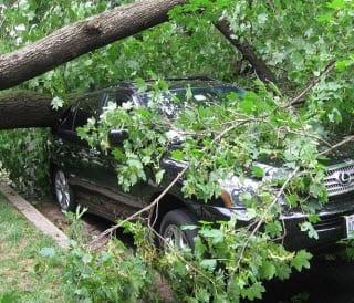windstorm xaver insurance news