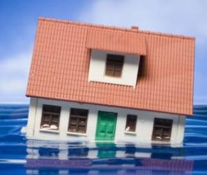 Flood Insurance and reinsurance
