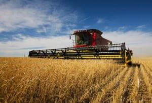 Crop insurance program 2014