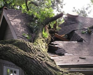 Homeowners insurance wind damage