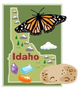 Idaho Insurance