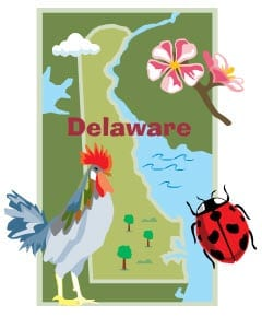 Delaware Insurance