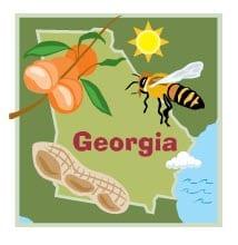 Georgia Insurance