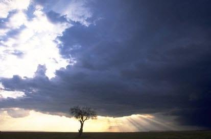 wind property Insurance news