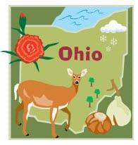 Ohio Insurance industry