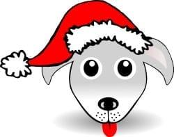 christmas pet insurance