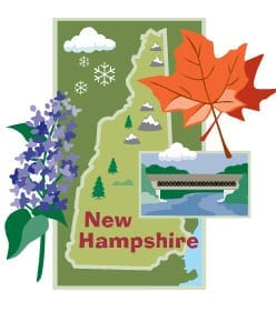 New Hampshire Insurance