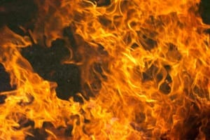insurance industry news bush fire