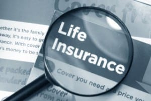 Insurance News Articles