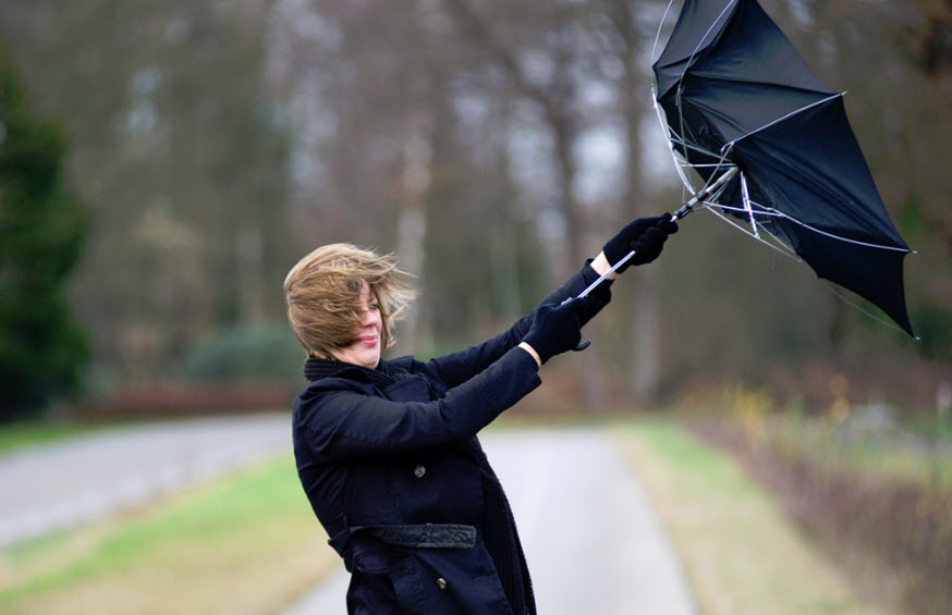 windstorm insurance news