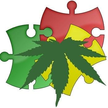 medical marijuana autism insurance bill Georgia