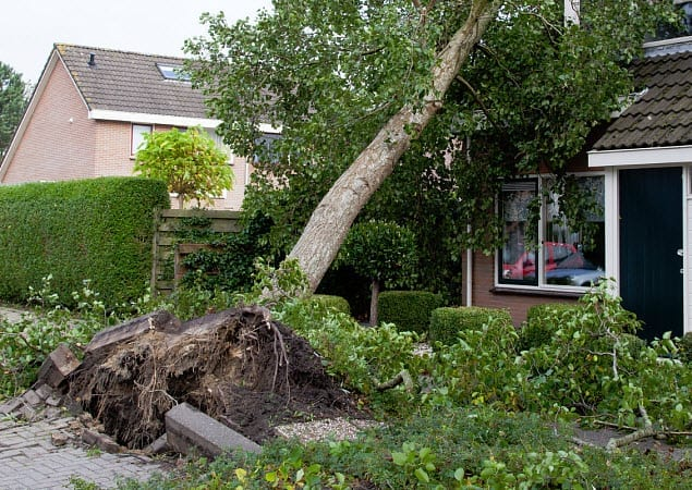 homeowners insurance damage storm