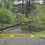severe weather storm tree power