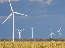 Windmill renewable energy insurance news
