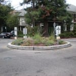 Roundabout at Berkeley Insurance news