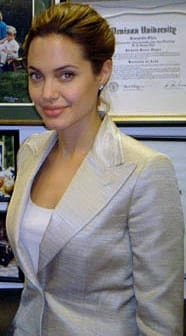 angelina jolie insurance news