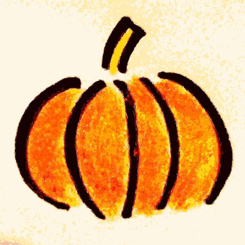 pumpkin festival insurance coverage