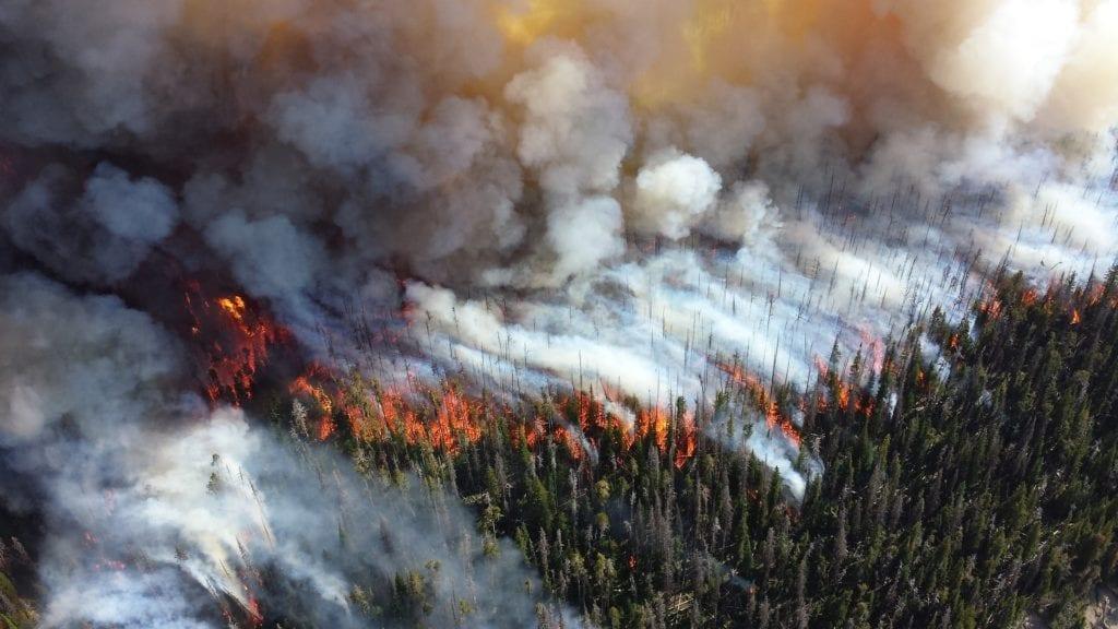 California wildfire damage