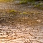 drought crop insurance coverage