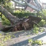 insurance workforce natural disaster wind damage