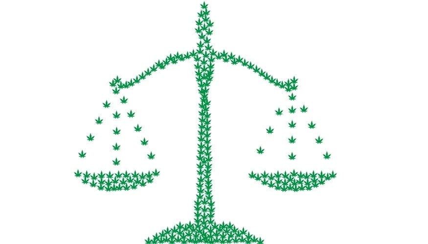 Cannabis Industry Insurance - Cannibas Scale - legal system