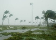 New Florida hurricane insurance option to be deductible- and inspection-free