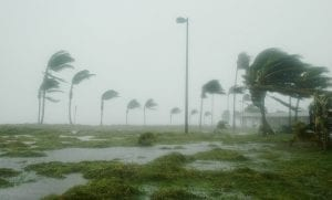 Florida hurricane insurance - Hurricane in Florida