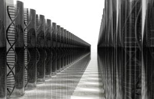DNA Testing - DNA Resarch