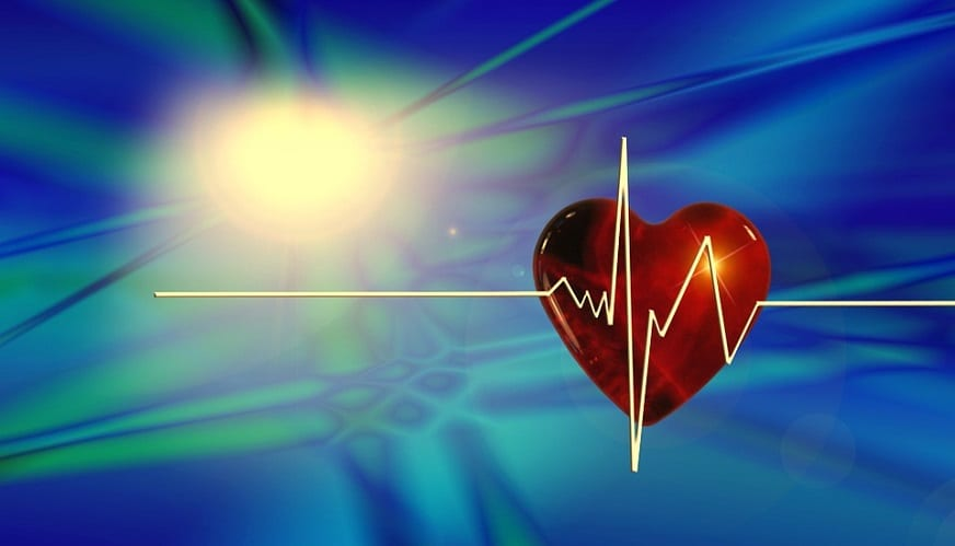 Cardiovascular disease risk - Heart - Health - Pulse