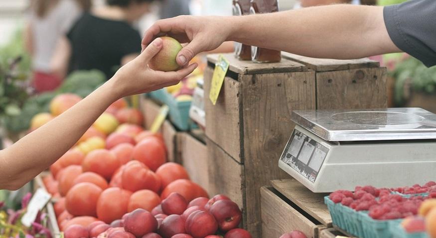 Farmers Market Insurance - Farmers Marekt - Fruit - Business