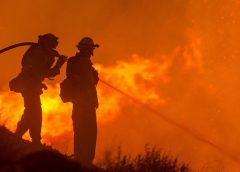 California fire insurance companies decline almost 350,000 policy renewals