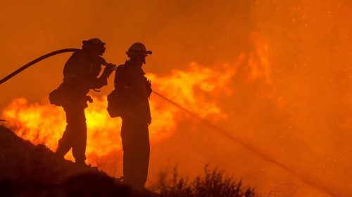 California fire insurance companies - Firefighters fighting wildfire