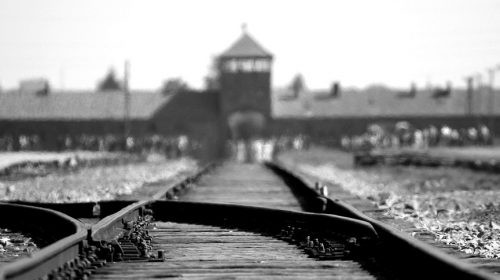 Holocaust Survivors - Image of Auschwitz
