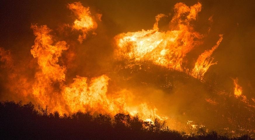 California wildfire preparedness - forest fire