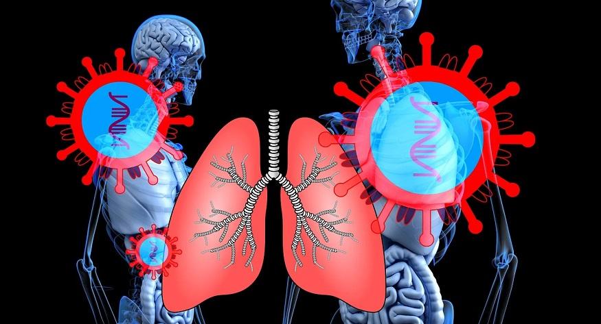 coronavirus testing - disease - health