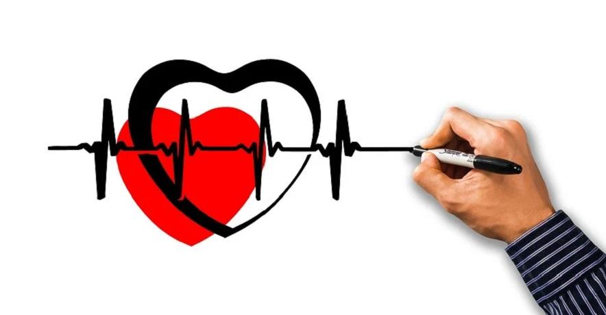 Pennsylvania health insurance exchange - health - heart - hand