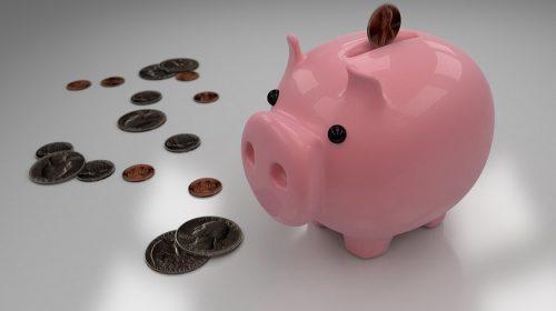Insurance shopping - Piggy Bank