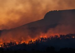 California wildfires may need to be a way of life, say insurance officials