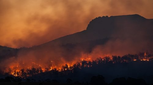 California wildfires - forest on fire