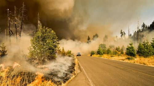 Wildfire Myths - forest fire