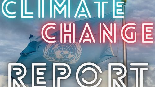 Insurance Industry - UN Climate Change Report