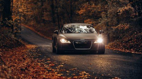 Luxury vehicle insurance - Audi autumn leaves
