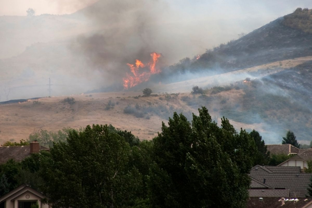California insurance commissioner - Wildfire near homes