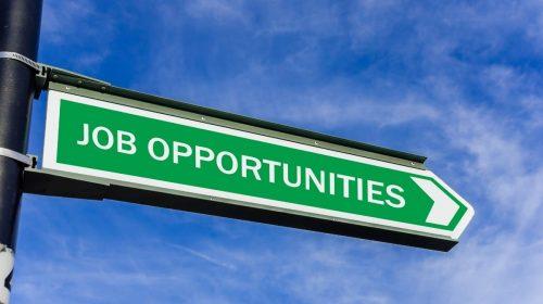 Insurance Job - opportunities