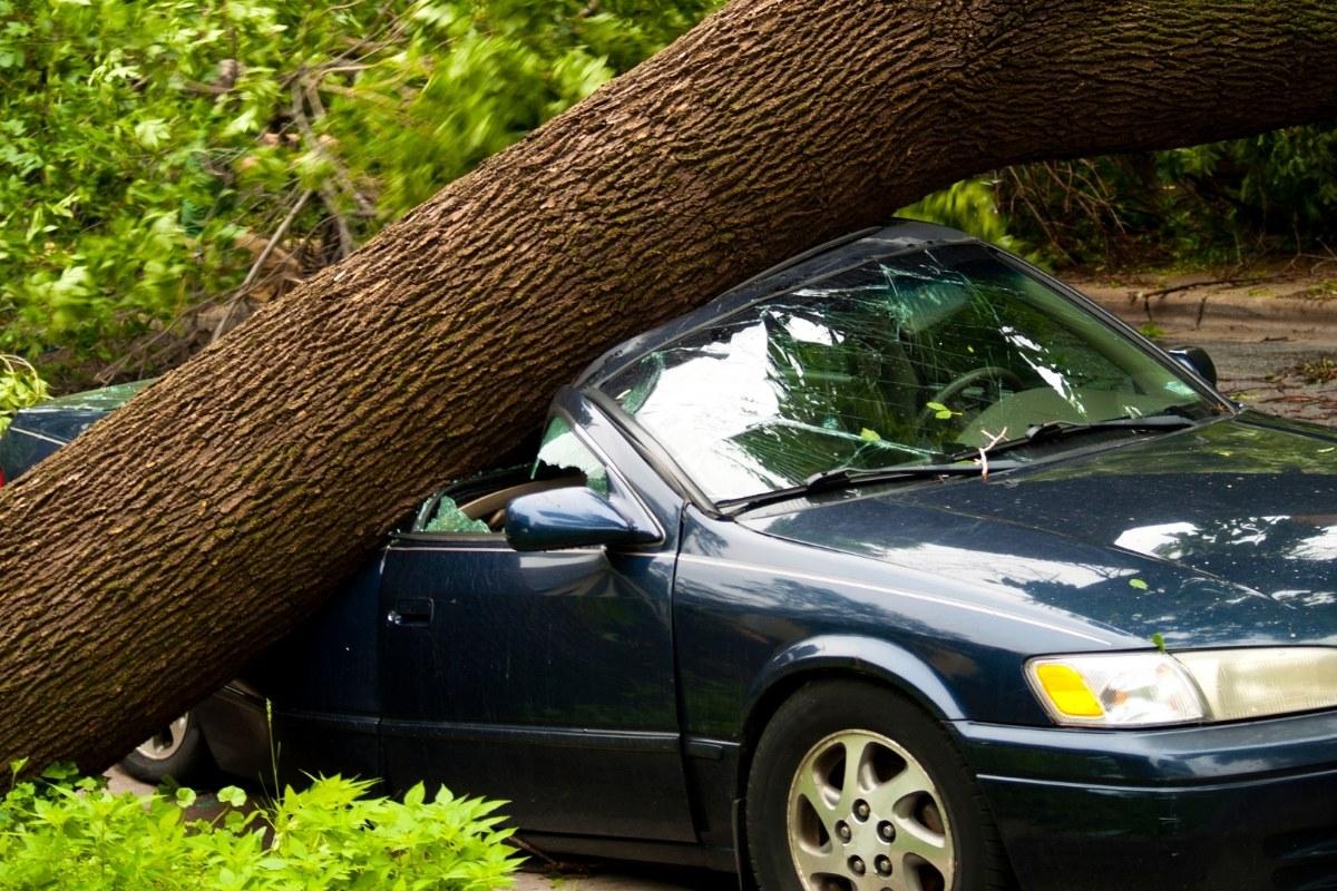comprehesive motor insurance