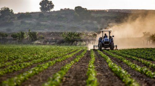 Agricultural insurance - Farm